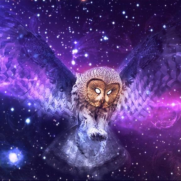 02-Cosmic-Consciousness-cosmic-owel